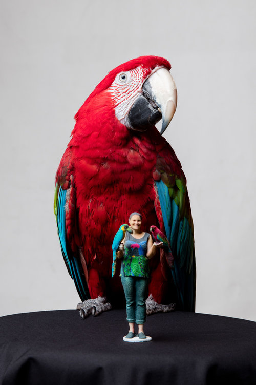 Lady and Parrot